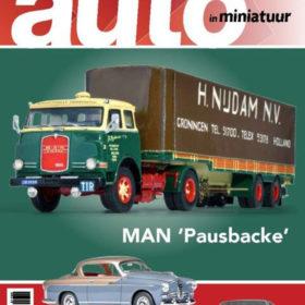 Auto in miniatuur 2017   2